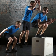 SPRI Cross Train Plyo Box