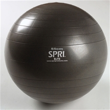 Elite Exercise Ball Slate 55cm